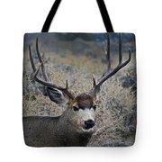 4x4 Mule Deer Buck   #7714 Tote Bag
