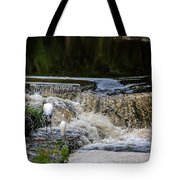 1 500th Of A Second Tote Bag
