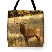 A Bull Elk In Rut Tote Bag