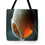 A Glass Of Beer Tote Bag