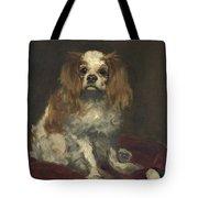 A King Charles Spaniel Tote Bag