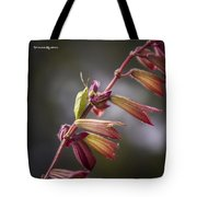 A Long Walk To The Top Tote Bag