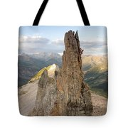 A Man Tops Out A Spire On Treasure Tote Bag