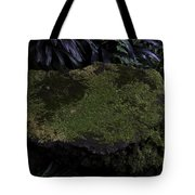 A Moss Covered Stone Inside The National Orchid Garden In Singapore Tote Bag