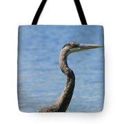 A Portrait Of A Great Blue Heron  Tote Bag