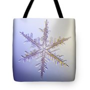 A Real Snowflake Showing The Classic Tote Bag