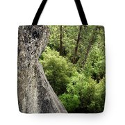 A Young Boy Climbs In Yosemite, June Tote Bag