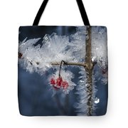 Absolute Zero Tote Bag