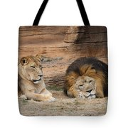African Lion Couple 3 Tote Bag