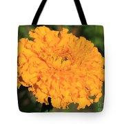 African Marigold Named Crackerjack Gold Tote Bag