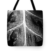 After The Rain - Bw Tote Bag