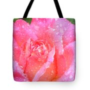 After The Rain Series Tote Bag