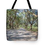 Lowcountry Allee Of Oaks Tote Bag