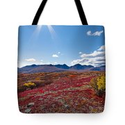 Alpine Landscape In Fall Tote Bag