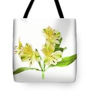 Alstroemeria Flowers Against White Tote Bag