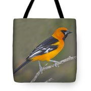 Altamira Oriole Tote Bag