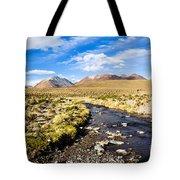 Altiplano In Bolivia Tote Bag
