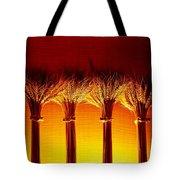 Amber Grains 2 Tote Bag