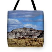 Amber Waves Of Grain And Purple Mountains Tote Bag