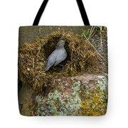 American Dipper Building Nest   #1535 Tote Bag