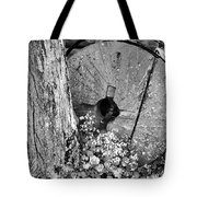 An Old Mill Stone Ely's Mill Roaring Fork Bw Tote Bag