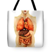 Anatomy Of Human Body Showing Whole Tote Bag