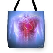 Anatomy Of The Chest Tote Bag