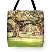 Ancient Oaks Tote Bag