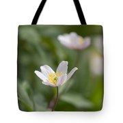 Anemone Windflower Tote Bag