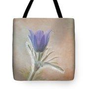 Announcing Spring Tote Bag