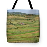 Apollonia, Or Apoloni, Fier Region Tote Bag