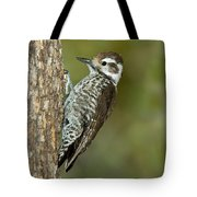 Arizona Woodpecker Tote Bag