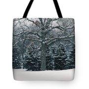 As The Snow Flies Tote Bag