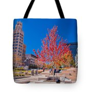 Asheville North Carolina Tote Bag