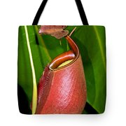 Asian Pitcher Plant Tote Bag