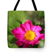 Aster From The Daylight Mix Tote Bag
