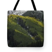 Autumn Angles Tote Bag