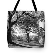 Autumn At Runnymede Uk Tote Bag