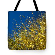 Autumn Blue Sky Tote Bag