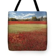 Autumn Blueberry Field Maine Tote Bag