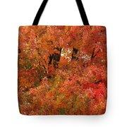 Autumn Colors Tote Bag