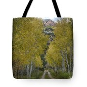 Autumn Drive Tote Bag