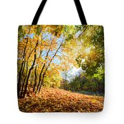 Autumn Fall Landscape In Forest Tote Bag