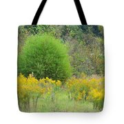 Autumn Grasslands 2013 Tote Bag