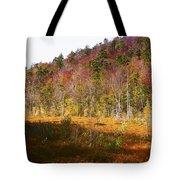 Autumn In The Adirondacks Tote Bag
