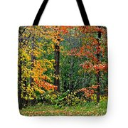 Autumn Landscape Tote Bag