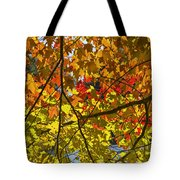 Autumn Maple Leaves Tote Bag