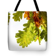 Autumn Oak Leaves Tote Bag
