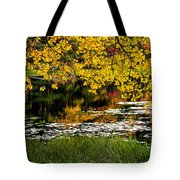 Autumn Pond 2013 Tote Bag