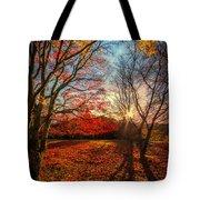 Autumn Shadows Tote Bag
